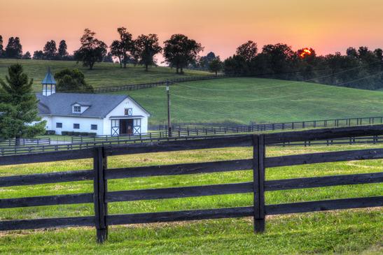 Places To Live Lexington Kentucky