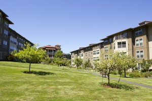 should  you move to an Apartment or Condo?